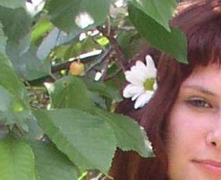 Lila Iris